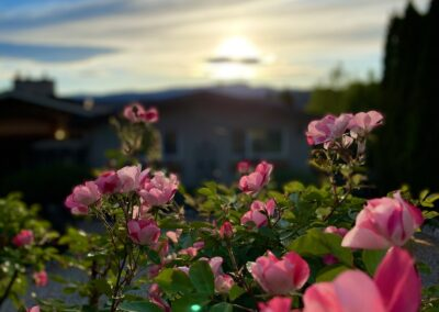 Romance is in bloom! at A Vista Villa Couples Retreat, the boutique B&B for couples in Kelowna